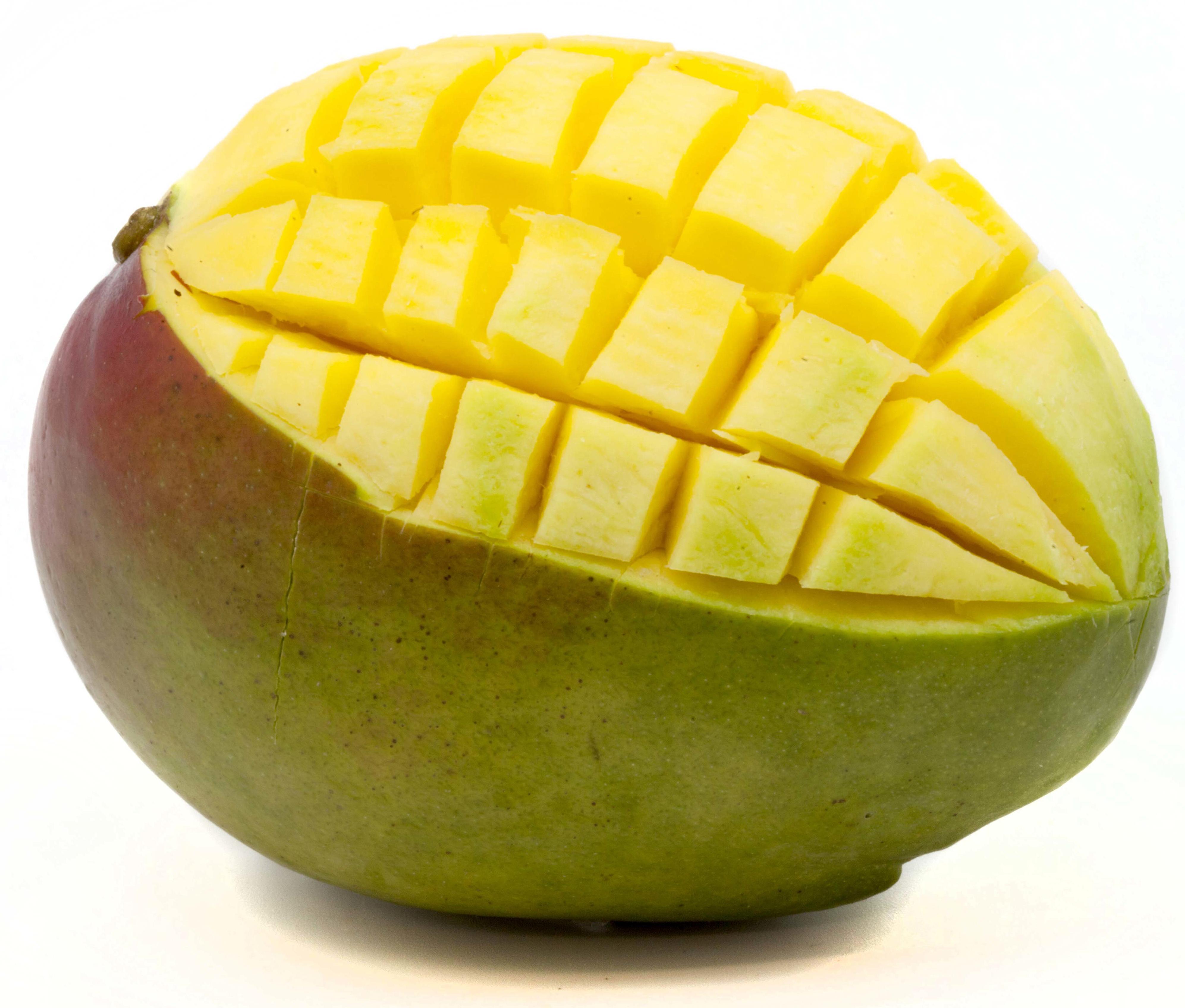 mangook